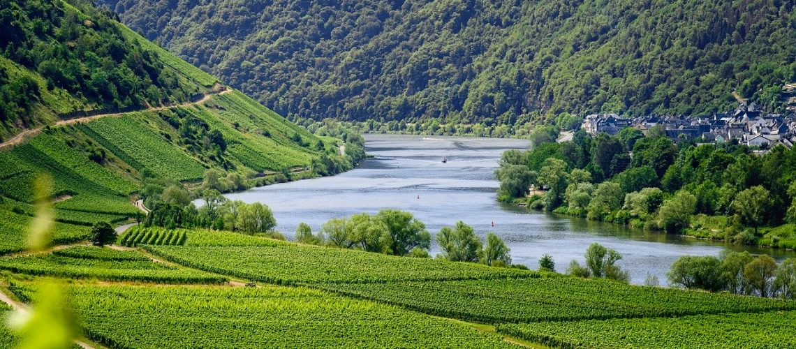 mosel-river-wineyards